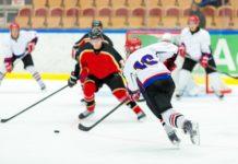 Aprender hóquei no gelo: tema do mês-resumo do poder do jogo